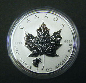 2017-Canada-5-1oz-Cougar-Privy-Mark-Silver-Maple-Leaf-coin-Wild-life-series