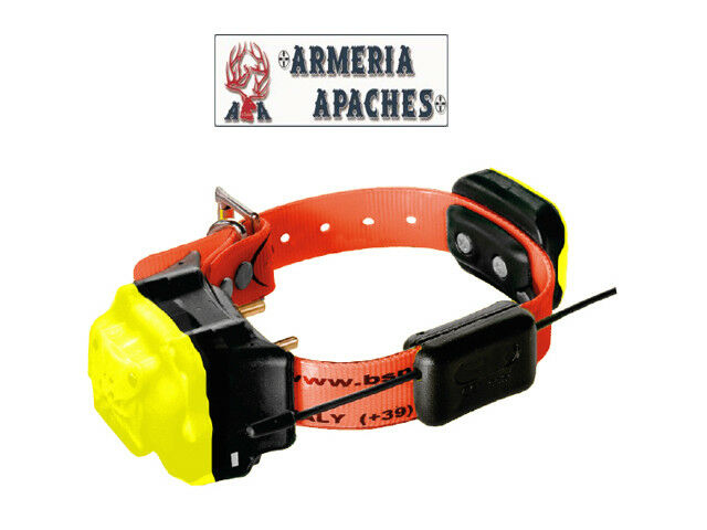 BS999 Radio Collare GPS + Beeper + Addestramento Plus & Strong