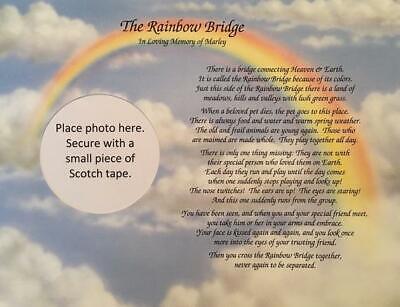 Memory of Dog Gift Sympathy of Pet Memorial Rainbow Bridge ...