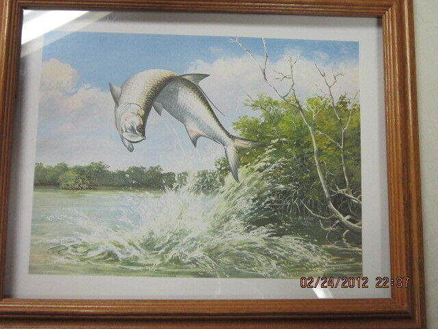 Maynard Reece tarpon  fishing picture framed collectible  the latest models