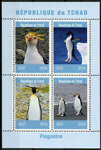 Chad-2019-Gomma-integra-non-linguellato-PINGUINI-Pinguino-King-4v-M-S-pingouins-birds-stamps