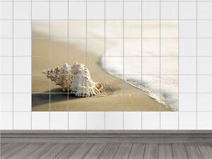 Das Bild Wird Geladen Fliesensticker Fliesenaufkleber Fliesentattoo Fuer  Badezimmer Strand Muschel Meer