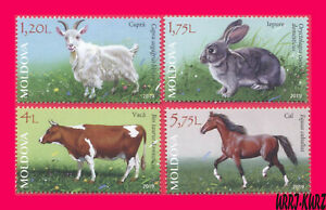 MOLDOVA 2019 Nature Fauna Farm Domestic Animals Goat Rabbit Cow Horse 4v MNH