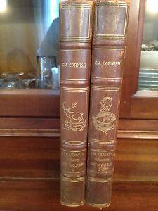CJ CORNISH LES ANIMAUX VIVANT DU MONDE 2 VOLUMES VERS 1930 - France - CJ CORNISH LES ANIMAUX VIVANT DU MONDE 2 VOLUMES VERS 1930VOLUME 1 : LES MAMMIFERESVOLUME 2 : OISEAUX POISSONS ET RETILES ETC LIVRES ANCIENS EN BON ETAT - France