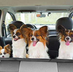 REAR WATERPROOF CAR SEAT COVER DOG PET PROTECTOR FIAT PANDA