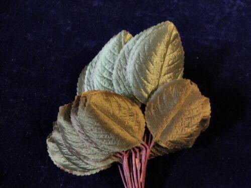 """Vintage Millinery Flower Leaf Green Satiny 1 1//2-2/"""" Japan 24 stem Bunch Y266"""