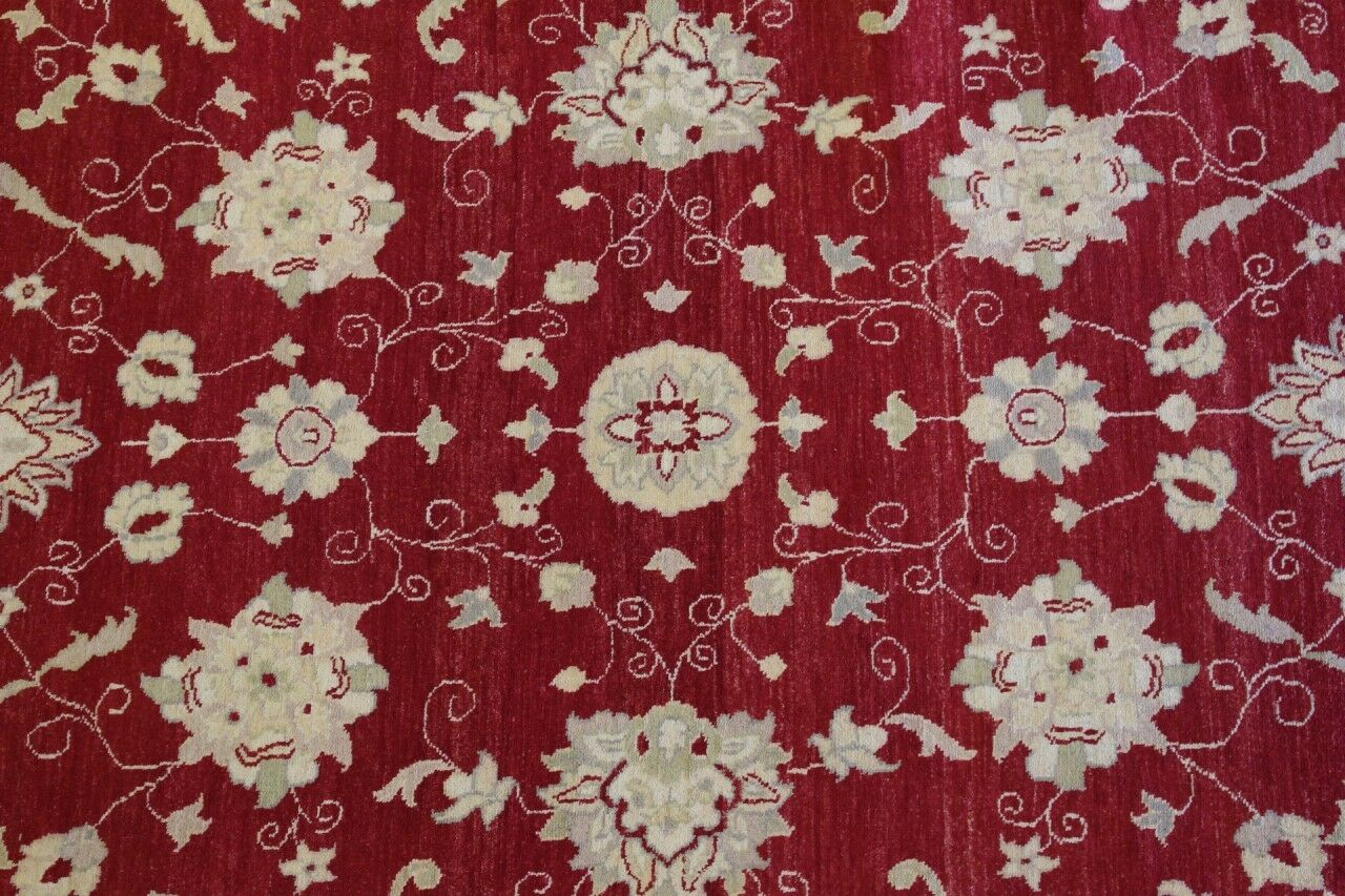 Rugstc 6.5x10 Senneh Chobi Ziegler rot Area Rug,Natural dye, Hand-Knotted,Wool Hand-Knotted,Wool Hand-Knotted,Wool bb909a