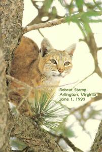 2482-First-Day-Ceremony-Program-2-00-Bobcat-Stamp-w-FDC