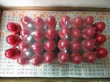 Bingo Daubers- Lot of 30-80ML Dabbin Fever Bingo Dabbers- Pick your colors!