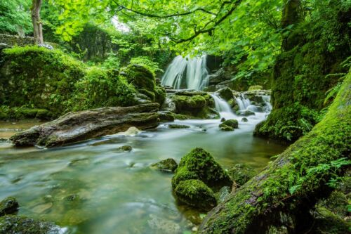 Green Forest Waterfall Trees Landscape Wall Art Poster /& Canvas Picture Prints