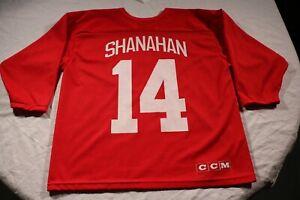 Detroit Red Wings Vintage 90s Brendan Shanahan Practice Jersey CCM L