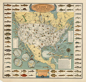 Big Game Fish Map Pictorial Border Wall Art Poster Print Wall Decor Fishing Gift