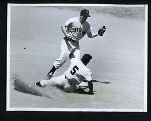 Image result for jim busby 1955 chicago white sox