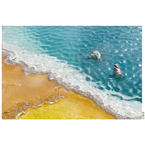 Bodenaufkleber 60 90cm 3D Delphin wasserdichtes Bad Seestern Wandaufkleber YB