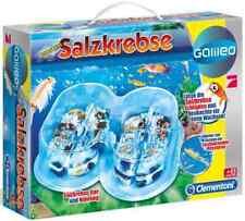 "Galileo "" ORIGINL Salzkrebse - Basis-Set "" Experimentierkasten Aquarium Nahrung"