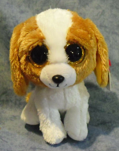 fb96448c534 Ty Beanie Babies Boos Cookie The Dog Boo 36012 for sale online