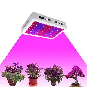 600W-Pflanzenlampe-LED-Grow-Light-VollSpektrum-Blumen-Gemuese-Pflanzen-Licht-Neu