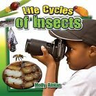 Life Cycle of Insects by Molly Aloian (Paperback, 2014)