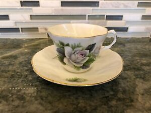 Vintage-Royal-Dover-Bone-China-White-Roses-Tea-Cup-amp-Saucer-Made-In-England