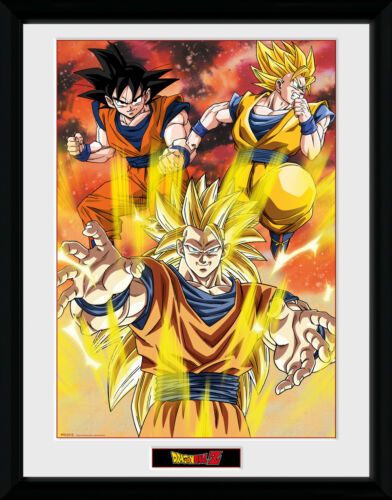 Dragon Ball Z 3 Gokus Framed Collector Print 30x40cm12x16
