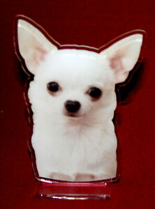 statuette-photosculptee-10x15-cm-chien-chihuahua-14-dog-hund-perro-cane