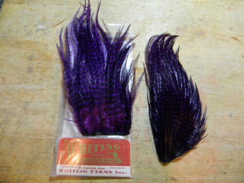 """ORANGE 50 Feathers /"""" SELECT SADDLES /"""" Size 3/"""" 4/"""" top Quality Color"""