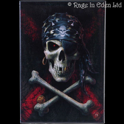 Pirate Skull Goth Fantasy Art Fridge Magnet By Anne Stokes 8x5 5cm Ebay
