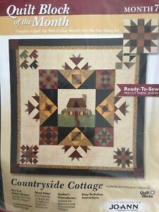 Quilt Block Of The Month Kit Momth 7 Joann Fabrics Ebay