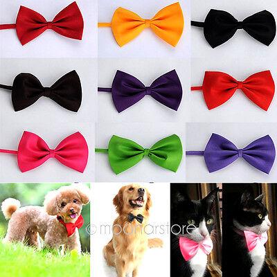 2PCS Cute Dog Cat Pet Puppy Toy Kid Cute Bow Tie Necktie Collar Clothes 2014 NEW