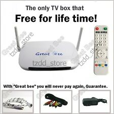 Great Bee Arabic TV box IPTV support 400+ Arabic channels Free for life time.
