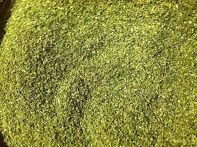 CATNIP DIRED VERY VERY FRESH 1//2  POUND FAST FREE DELIVERY 2019 CROP