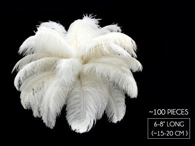 """100 Pieces 6-8/"""" Peacock Green Wholesale Ostrich Feathers Halloween Mask Costume"""