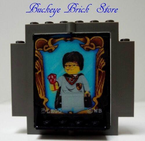 Lego BLACK SWIVEL DOOR Dark Gray Frame 2x5x5 SORCERER/'S STONE REFLECTION 4702