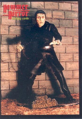 Hammer Horror di serie 2 1996 pietra angolare delle comunicazioni PROMO CARD M1 Film