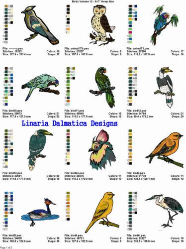LD MACHINE EMBROIDERY DESIGNS BEAUTIFUL BIRDS V.12 5X7