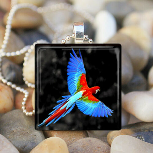 COLORFUL PARROT Macaw Tropical Bird Feather Glass Tile Pendant Necklace