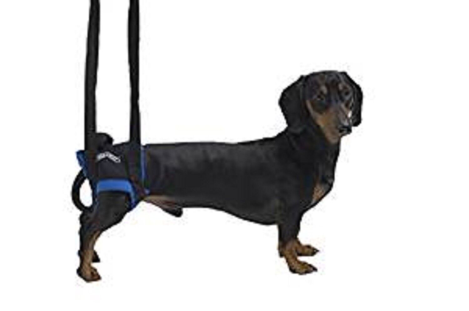 Kruuse Walkabout Hind Legs Harness, Medium Large, Premium Service, Fast Dispatch