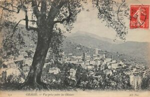 Grasse-View-Taken-between-all-Olive-Trees