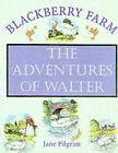 The Adventures of Walter by Jane Pilgrim (Hardback, 2000)