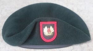 Details about Authentic New 1SFOD-D, CAG, DELTA Force SINE PARI Green  Beret, Obsolete Crest