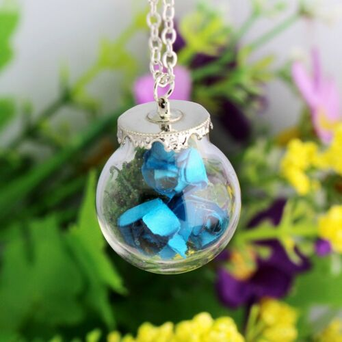 Rose Dried Necklace Women Paper Rose Glass Bottle Jewelry Necklace Pendant