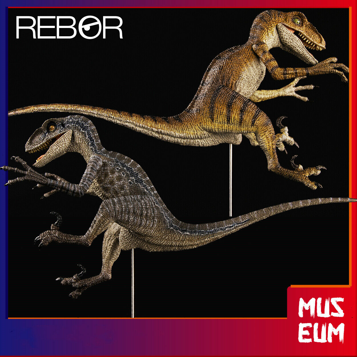 Rebor 1 18 Velociraptor Figure Raptor Dinosaure Modèle Animal Décoration collector toy