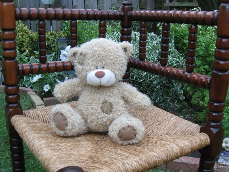 Vintage Struis Apeldoorn Holland Patched Teddy Bear