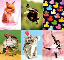 Surtidos Pack De 6 Foto Cumpleaños Tarjetas de felicitación mixto tarjeta de saludos paquetes
