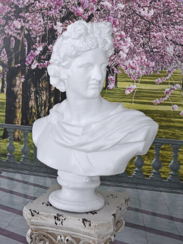 Buste D' Homme Torse Antique Dieu Apollon Mythologie Sculpture de Jardin Figure