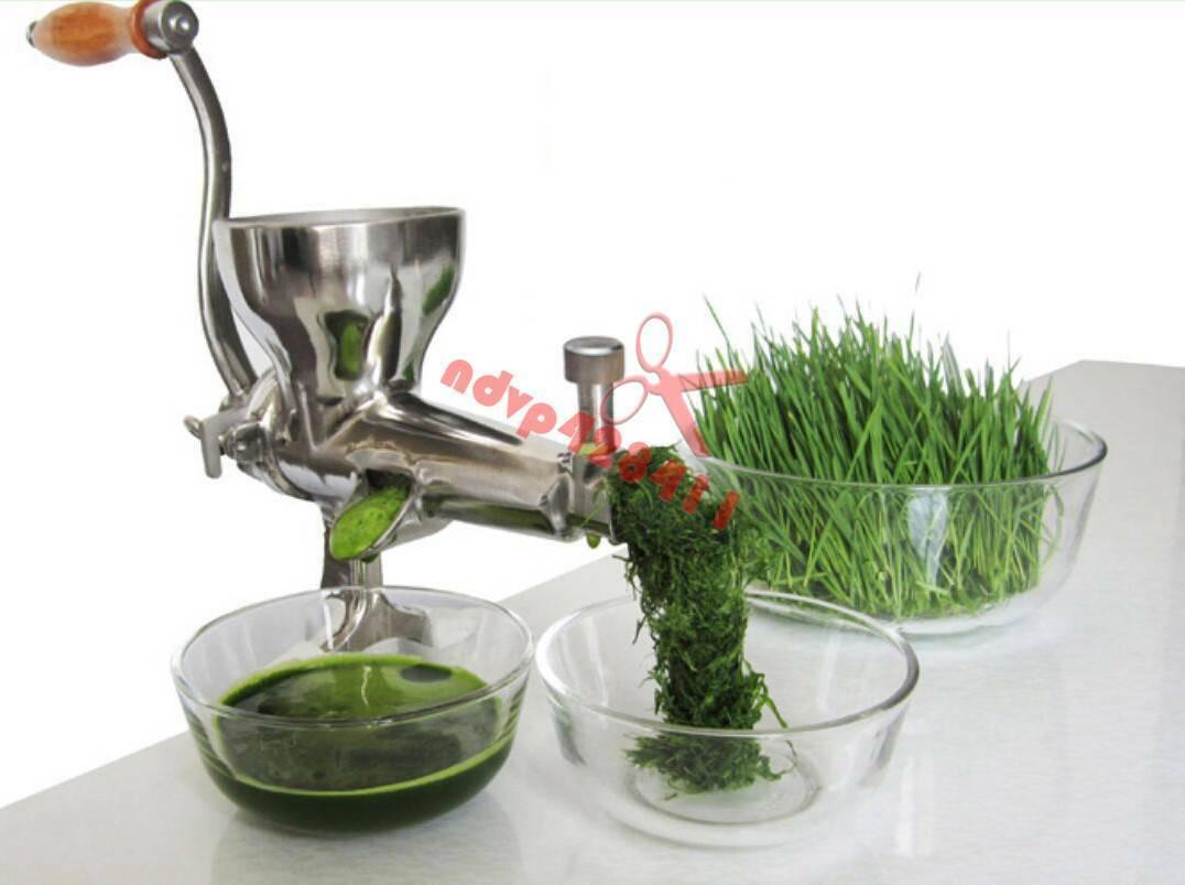 Acier Inoxydable Lente Juicer main MANUEL jus de fruits Agropyre Jus Extracteur