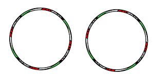 Adesivi-ruote-moto-strisce-cerchi-YAMAHA-TMAX-500-tmax-530-adesivi-tricolore