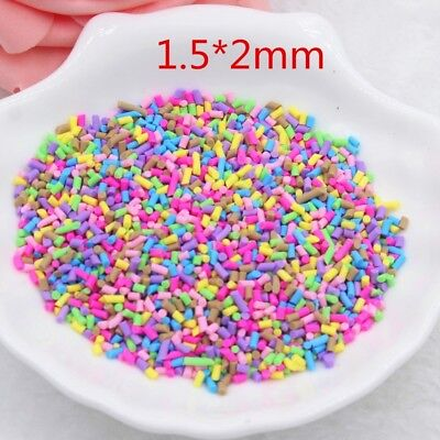 50g Polymer Clay Fake Sprinkles for Slime Decoden Phone Case Rainbow Craft  Charm | eBay
