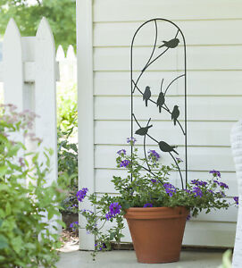 metal wall trellis bird design outdoor garden climbing plant support panel ebay