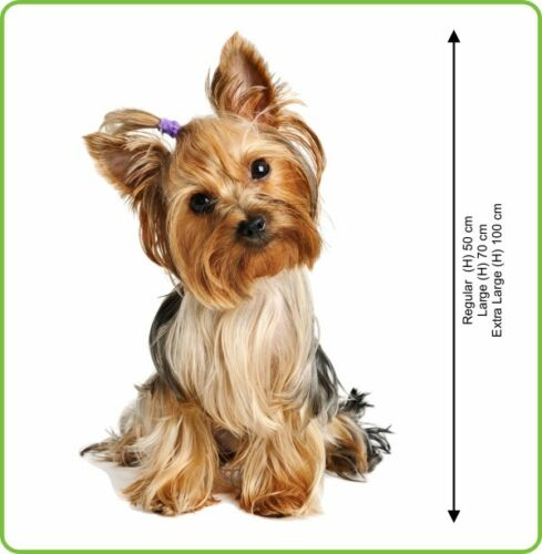 WALL STICKERS DOG YORKSHIRE TERRIER small dog Vinyl Decal Mural Art Sticker